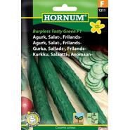 Agurk, Salat-, Frilands-, Burpl. Tasty Green F1